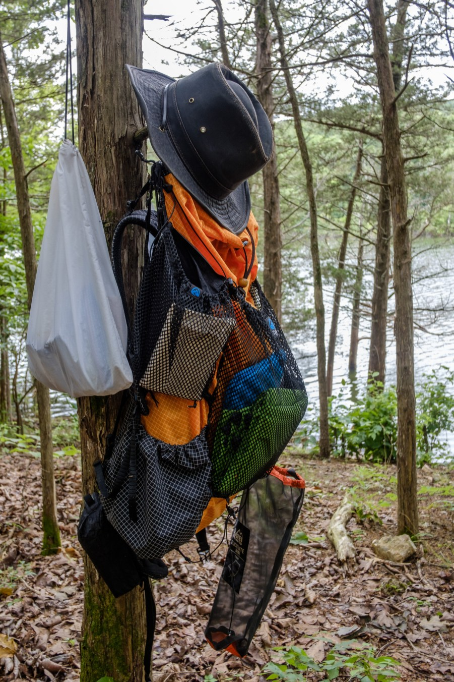 Gear-rack Tree - It's what every good campsite needs. Piney Creek Wilderness - Day Two. Copyright © 2020 Gary Allman, all rights reserved.
