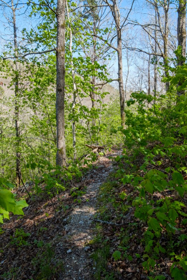 In places the trail was narrow. Copyright © 2021 Gary Allman, all rights reserved.