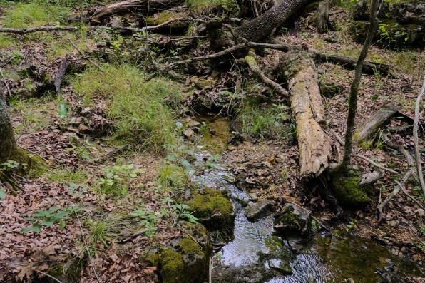 Spring pool. Copyright © 2021 Gary Allman, all rights reserved.