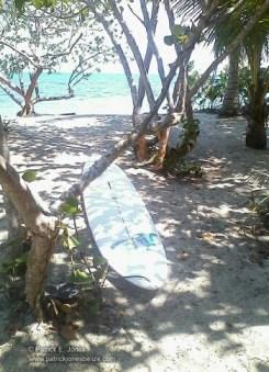 Rodriguez' surf board