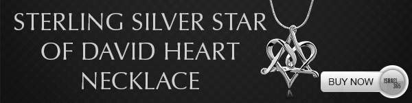 Sterling silver star of david heart necklace. Buy Now!
