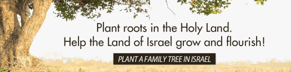 Plant roots in the Holy Land. Help the Land of Israel grow and flourish! Plant a family tree in Israel!