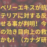cranberry-title