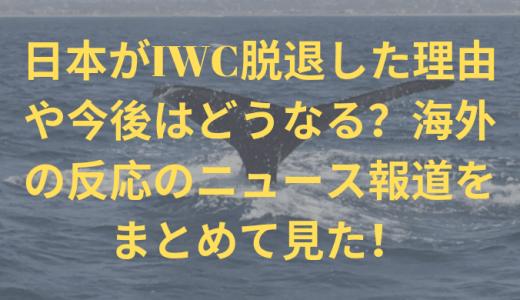 日本がIWC脱退した理由や今後はどうなる?海外の反応のニュース報道をまとめて見た!