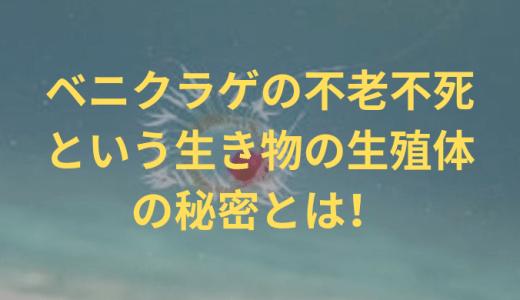 ベニクラゲの不老不死という生き物の生殖体の秘密とは!