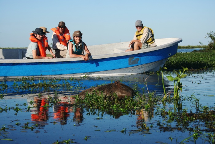 Iberá National Park gives eco-tourism a boost in Argentina 1