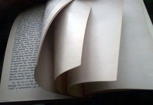 640px-Blank_page_intentionally_end_of_book source:https://en.wikipedia.org/wiki/Intentionally_blank_page#/media/File:Blank_page_intentionally_end_of_book.jpg