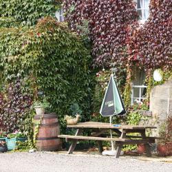 Explore Powburn in Northumberland