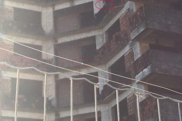 Bolas vermelhas mostram os pombos nas varandas dos que seriam os apartamentos