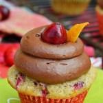 Cranberry Orange Cupcakes with Chocolate Orange Frosting