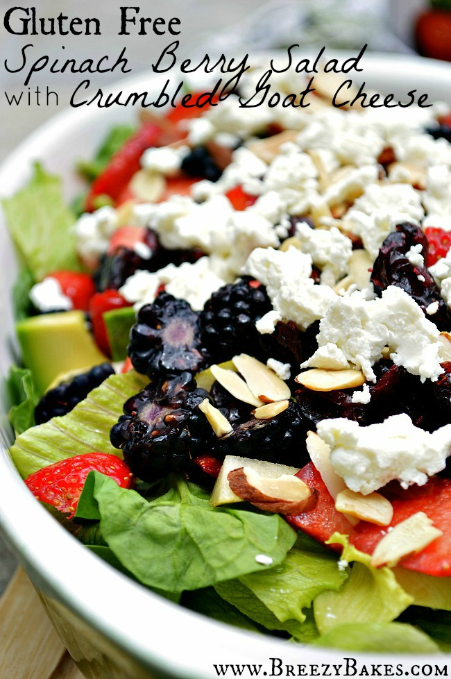 Welcome the summer with all kinds of sweet berry goodness in this fresh and tangy Gluten Free Goat Cheese Berry Spinach Salad. Dress it up with Brianna's Blush Wine Vinaigrette for a real treat.