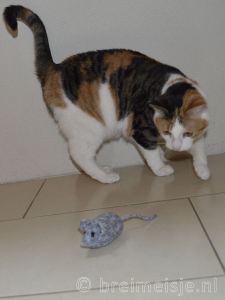 Breipatroon muis breien gratis patroon