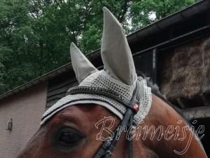 Oornetje paard zelf maken