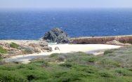 Reiseblog BREITENGRAD53 Aruba: Wieder einer dieser Morgen, der nie enden soll 8