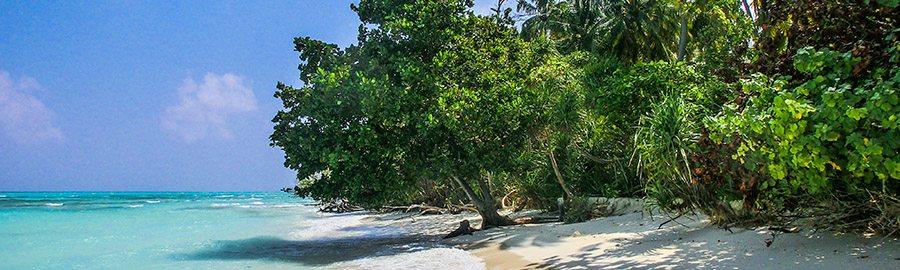 Urlaub im Februar - Beste Reisezeit Februar - Reisezeit - Urlaub auf den Malediven, Seychellen, Fiji