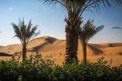 Abu Dhabi - Joerg Pasemann - Rub Al Khali -2