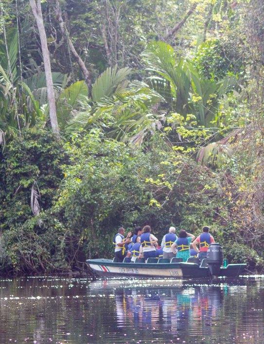 Costa Rica - Tortuguero Nationalpark - Guided Tour