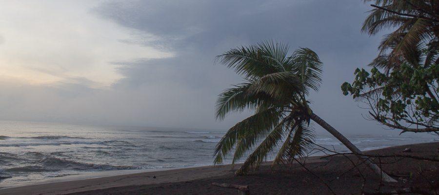 Costa Rica - Tortuguero Nationalpark - Schildkroetenstrand-2