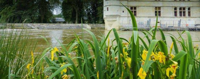 20160614 Loire-Radweg breitengrad53 LEhlers (1 von 1)