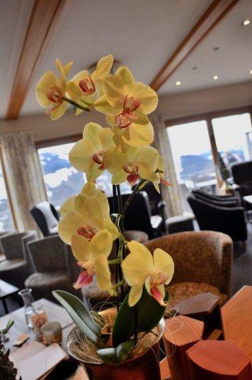 Entspannen im Hotel Bergkristall Elisabeth Konstantinidis Reiseblog Breitengrad53 SC 1064 - Entspannen mit allen Sinnen in Oberstaufen