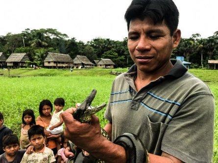 Safari Amazonas-IMG_6115_korr