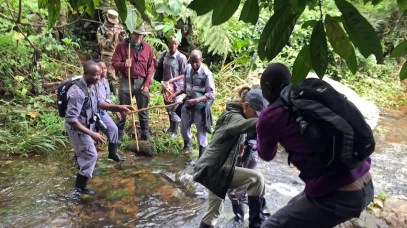 Uganda-Gorillas-Breitengrad53-Reiseblog-Jutta-Lemcke-_2831