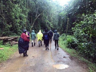 Uganda-Gorillas-Breitengrad53-Reiseblog-Jutta-Lemcke-_2926_korr