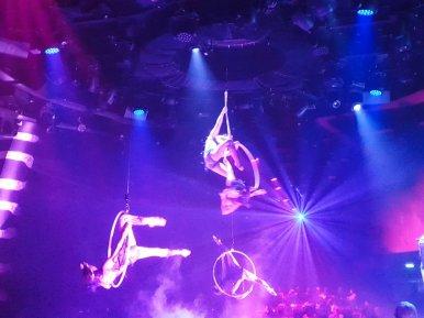 MSC_Bellissima_Cirque 3