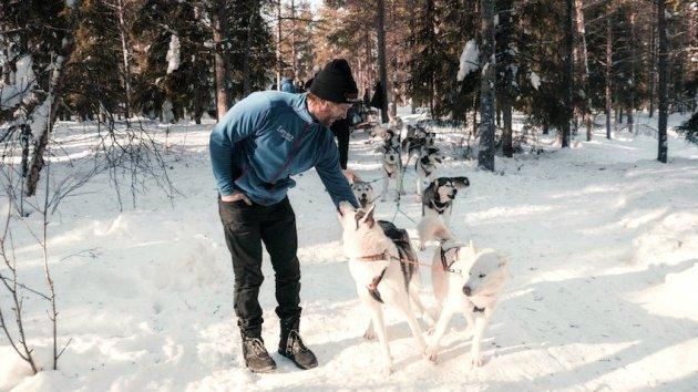 singlereisen.de_Lappland_Huskys vor dem Start