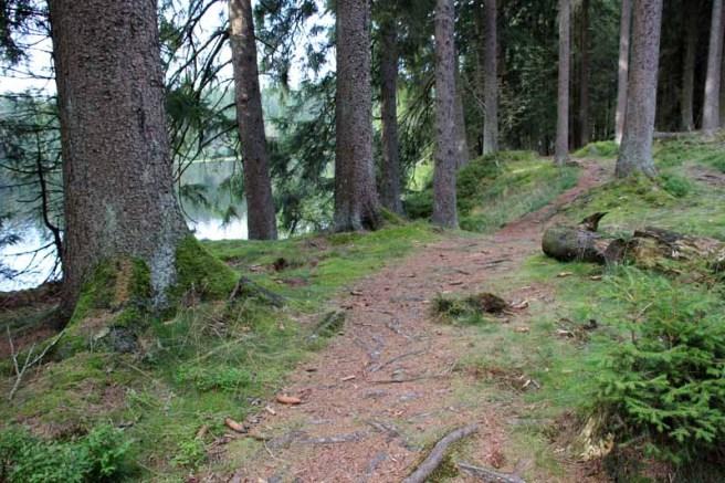 Der Weg führt durch eine wunderbare Landschaft
