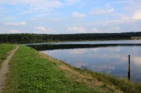 Der Hirschler Teich im Harz