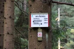 Wegweiser im Harz