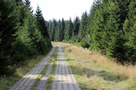 Der ehemalige Kolonnenweg der DDR