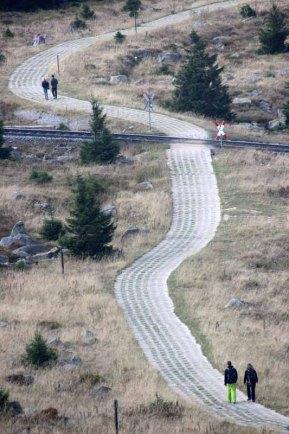 Der Kolonnenweg