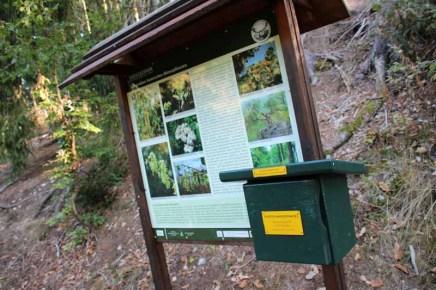 Hexenstieg wandern Stempelstelle der Harzer Wandernadel