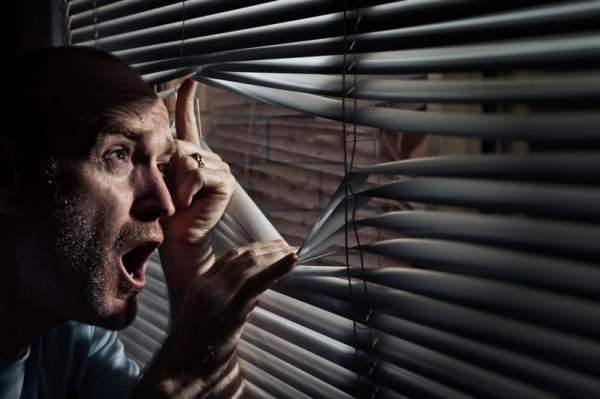 Have you ever looked out the window only to see aliens coming to take you away for some probing? If you have, you are not alone.........