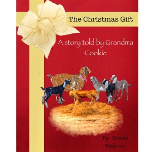 The Christmas Gift 8 x 10 hardcover book
