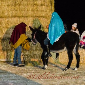 Our Live Nativity….