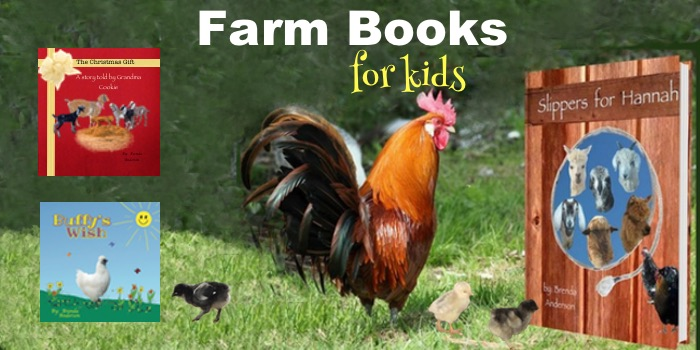 Storybooks with farm animals that teach lessons of friendship, love and how to help others. Fun lessons on teamwork. A Christmas book that tells the story of the birth of Christ and why we celebrate Christmas. A story through the eyes of the farm animals. #Christmas #childrensbooks, #farmanimals #farmbooks #kidsbooks #friendship #love #chickens #goats #sheep #alpaca #Nativity