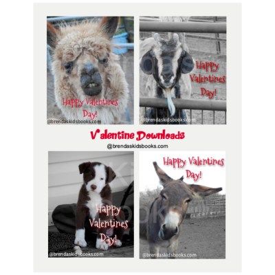 Valentines, farm animals, alpaca, puppy, donkey, goat, Happy Valentines Day