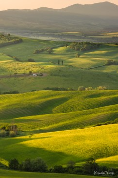 Rolling Hills in Morning Light, Tuscany.