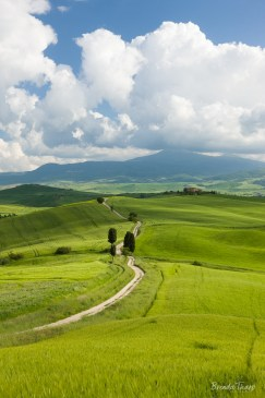 Country road in Tuscany.