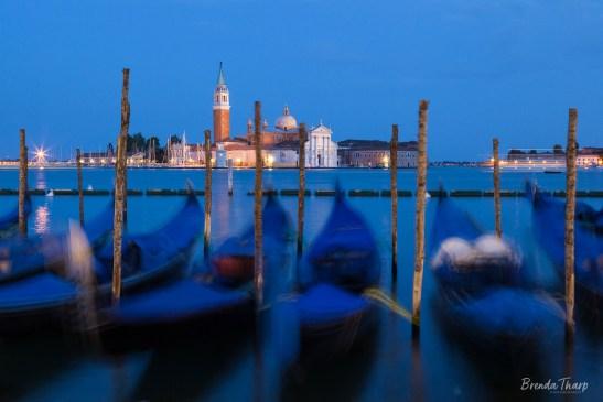 Bobbing gondolas at dusk, Venice.