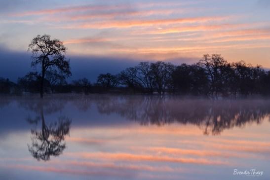 Reflecting on Dawn, California.