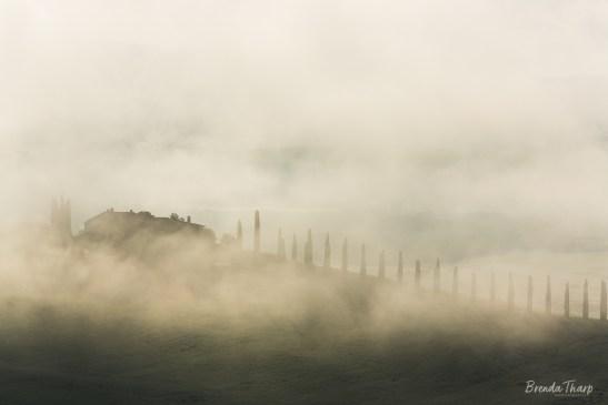 Tuscany, Italy in fog.