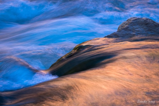The Virgin River in Zion National Park glows with sunset's colors reflected in the moving water.