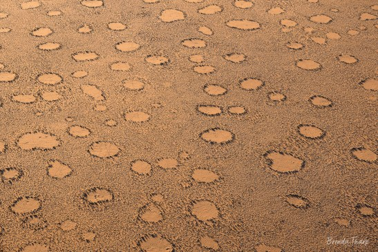Pattern of Fairy circles, Namibia.