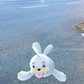 neuer Pokémon