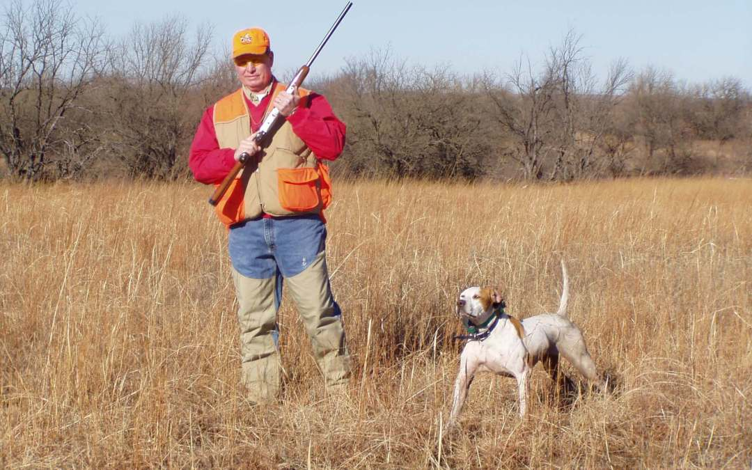 Bird dogs are going to like the smell of the Kansas quail season