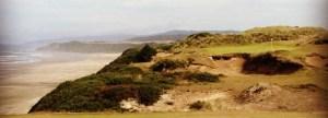 Pacific Dunes No. 11
